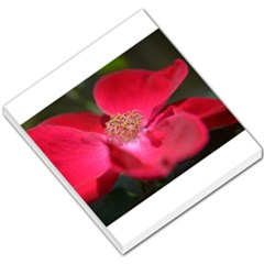 Bright Red Rose Small Memo Pads