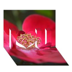 Bright Red Rose I Love You 3D Greeting Card (7x5)