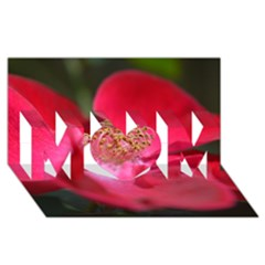 Bright Red Rose MOM 3D Greeting Card (8x4)
