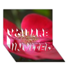 Bright Red Rose You Are Invited 3d Greeting Card (7x5)