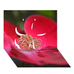 Bright Red Rose Clover 3D Greeting Card (7x5)