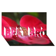 Bright Red Rose Best Bro 3d Greeting Card (8x4)