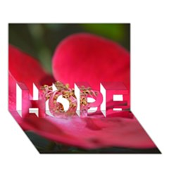 Bright Red Rose Hope 3d Greeting Card (7x5)