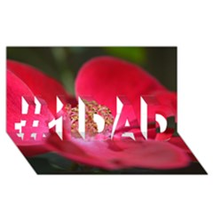 Bright Red Rose #1 Dad 3d Greeting Card (8x4)