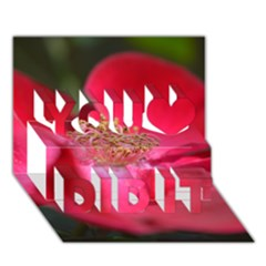 Bright Red Rose You Did It 3D Greeting Card (7x5)