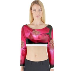 Bright Red Rose Long Sleeve Crop Top