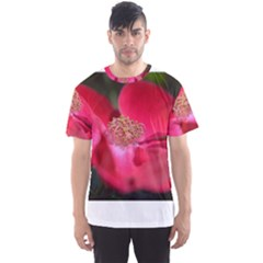 Bright Red Rose Men s Sport Mesh Tees