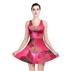 Bright Red Rose Reversible Skater Dresses