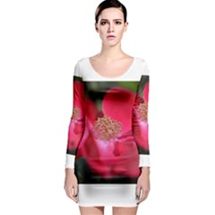 Bright Red Rose Long Sleeve Bodycon Dresses