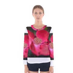 Bright Red Rose Women s Long Sleeve T Shirts