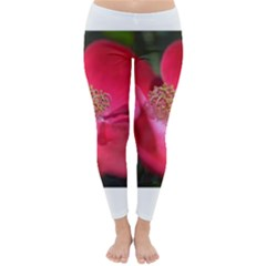 Bright Red Rose Winter Leggings