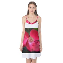 Bright Red Rose Camis Nightgown