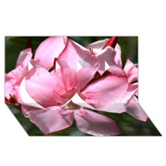 Pink Oleander Twin Hearts 3D Greeting Card (8x4)