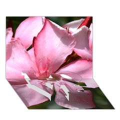 Pink Oleander Love Bottom 3d Greeting Card (7x5)