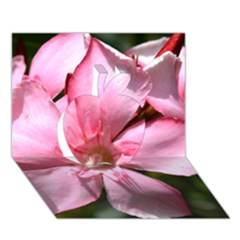 Pink Oleander Apple 3D Greeting Card (7x5)