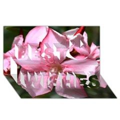 Pink Oleander Best Wish 3d Greeting Card (8x4)