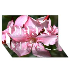 Pink Oleander Merry Xmas 3D Greeting Card (8x4)