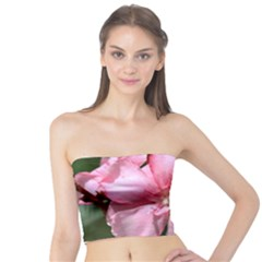 Pink Oleander Women s Tube Tops