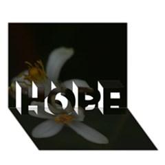 Lemon Blossom Hope 3d Greeting Card (7x5)