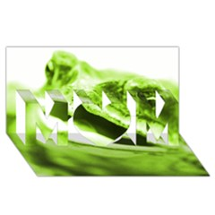 Green Frog Mom 3d Greeting Card (8x4)