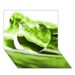 Green Frog Heart 3D Greeting Card (7x5)
