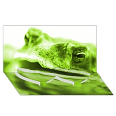 Green Frog Twin Heart Bottom 3D Greeting Card (8x4)