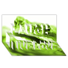 Green Frog Laugh Live Love 3D Greeting Card (8x4)