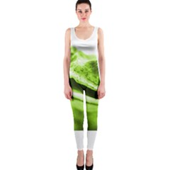 Green Frog OnePiece Catsuits