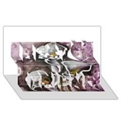 Gala Lilies Best Friends 3D Greeting Card (8x4)