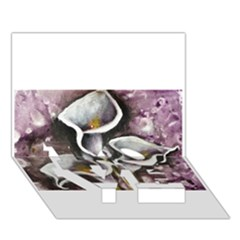 Gala Lilies LOVE Bottom 3D Greeting Card (7x5)