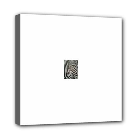 Unique Zebra Design Mini Canvas 8  X 8