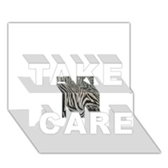 Unique Zebra Design TAKE CARE 3D Greeting Card (7x5)