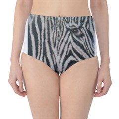 Unique Zebra Design High Waist Bikini Bottoms