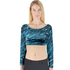 Dsc 029032[1] Long Sleeve Crop Top