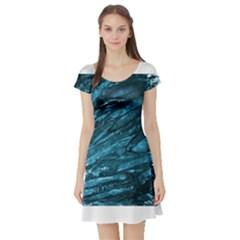 Dsc 029032[1] Short Sleeve Skater Dresses