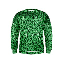 Green Cubes Boys  Sweatshirts