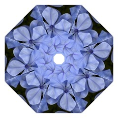 Bright Blue Flowers Folding Umbrellas