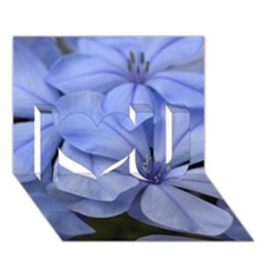 Bright Blue Flowers I Love You 3D Greeting Card (7x5)