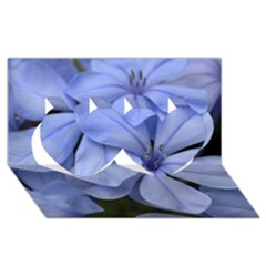 Bright Blue Flowers Twin Hearts 3D Greeting Card (8x4)