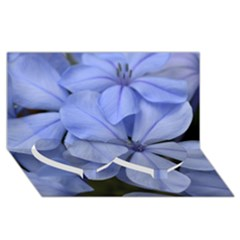 Bright Blue Flowers Twin Heart Bottom 3D Greeting Card (8x4)
