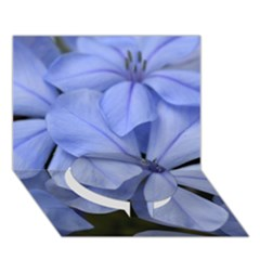 Bright Blue Flowers Circle Bottom 3D Greeting Card (7x5)