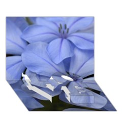 Bright Blue Flowers Love Bottom 3d Greeting Card (7x5)