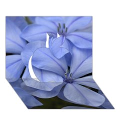 Bright Blue Flowers Apple 3d Greeting Card (7x5)
