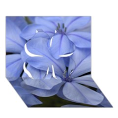 Bright Blue Flowers Clover 3D Greeting Card (7x5)