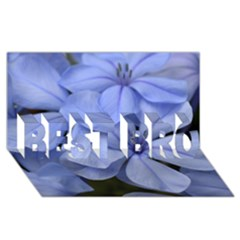 Bright Blue Flowers BEST BRO 3D Greeting Card (8x4)