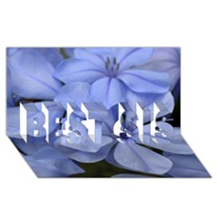 Bright Blue Flowers BEST SIS 3D Greeting Card (8x4)