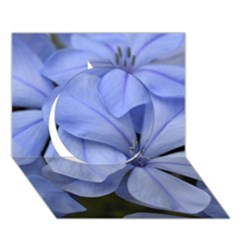Bright Blue Flowers Circle 3D Greeting Card (7x5)