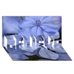 Bright Blue Flowers Believe 3d Greeting Card (8x4)