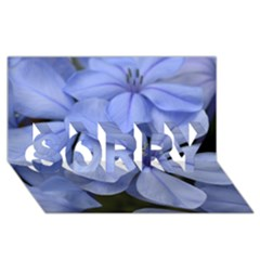 Bright Blue Flowers Sorry 3d Greeting Card (8x4)