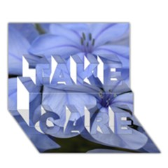 Bright Blue Flowers TAKE CARE 3D Greeting Card (7x5)